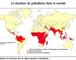 La situation du paludisme dans le monde