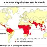 Infections bactériennes et parasitaires