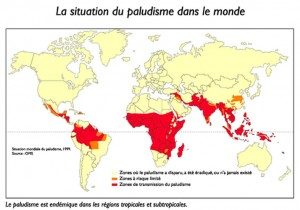 The malaria situation in the world
