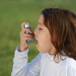 Asthme et allergie de l'enfant risque augmenté par les fast-food ?