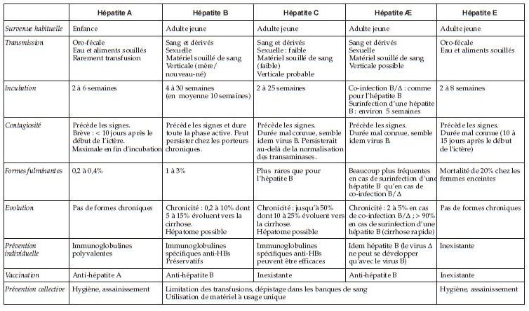 Les différentes formes d'hépatite virale