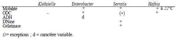 TABLEAU I : principaux caractères distinctifs entre les genres Klebsiella, Enterobacter, Serratia et Hafina