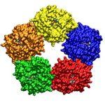 CRP (protéine C-réactive)