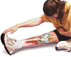 Lésions musculo-aponévrotiques et tendineuses