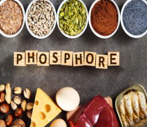 Activité des minéraux les plus étudiés en Nutrithérapie - Phosphore
