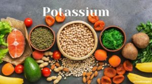 Activity of the most studied minerals in Nutritherapy - Potassium