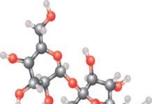 Catégories moléculaires du corps